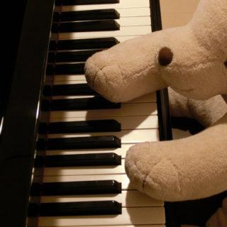 札幌市北区麻生駅と東区栄町駅近くの駐車場があるピアノ教室・音楽教室ですの無料体験レッスン